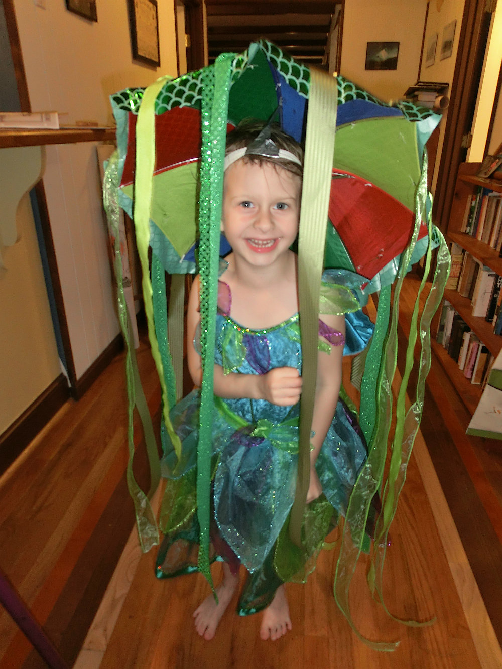 My ...  sc 1 st  Thoughts from Thicket House - WordPress.com & A Princess and a Jellyfish went to a Party | Thoughts from Thicket House