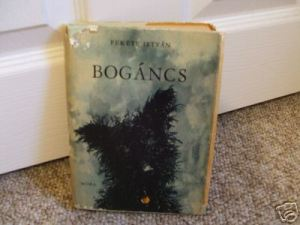 bogancs cover by fekete istvan