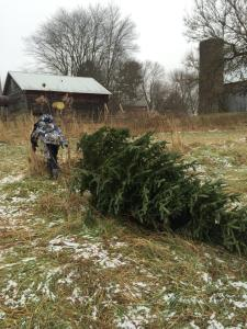 Nathan dec 2014 getting the tree 2