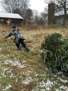 Nathan dec 2014 getting the tree