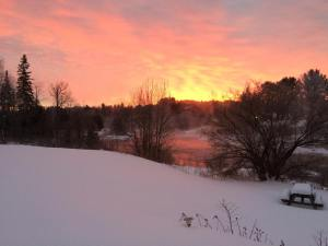 Alice jan 2015 Algonquin sunrise