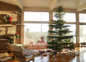Emily dec. 2014 christmas tree in daylight