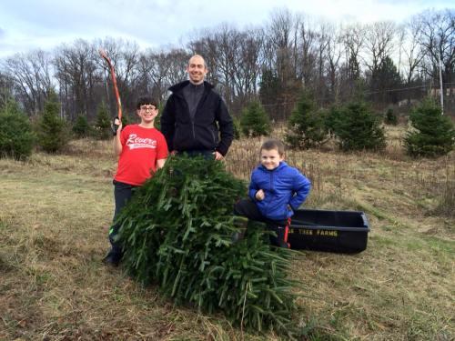 Stephen dec 2015 getting the tree