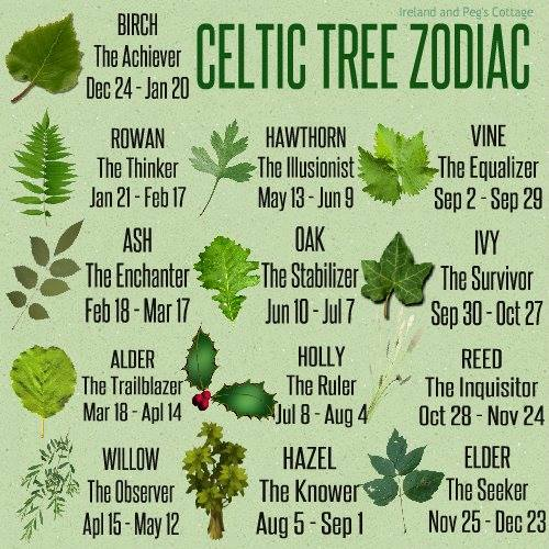art tree zodiac