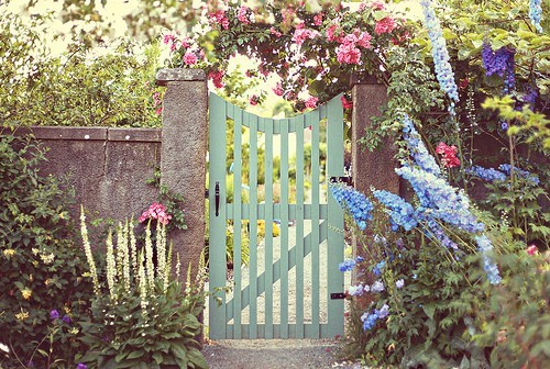 Garden gate pale blue green
