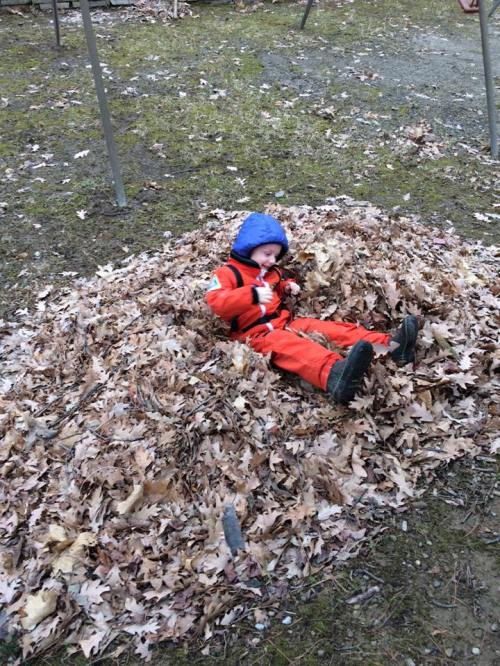 Stephen feb 2016 in the leaves at Alice nenis