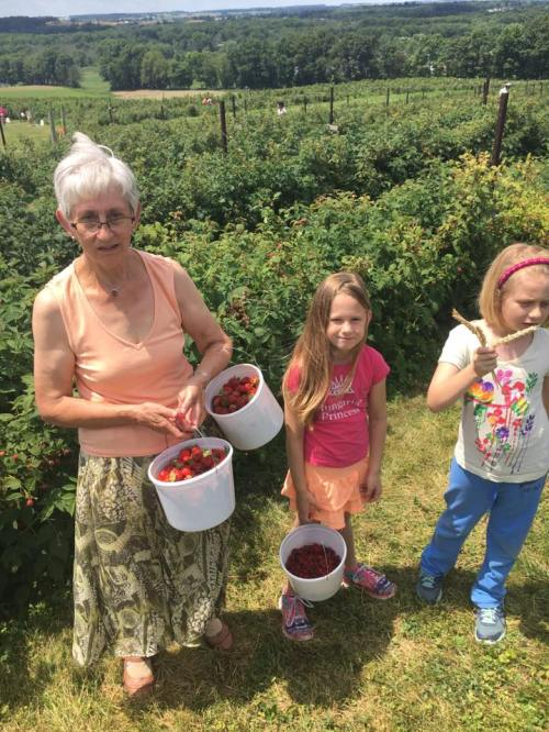 Sofia june 2016 fruit w oma and clara and papa near rittman
