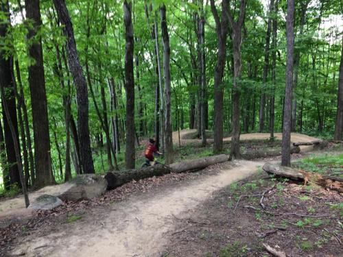 Stephen June 2017 mountain bike trail Hampton Hills..........
