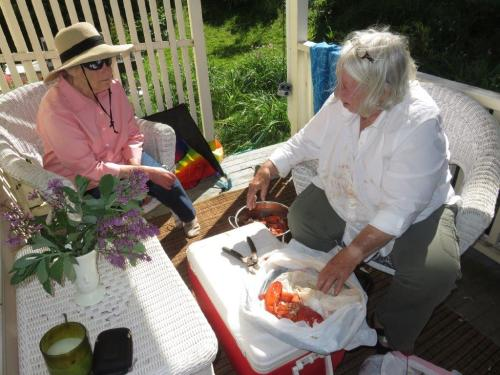 chaut june 2018 daly lobstah sideporch